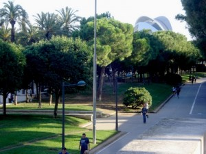 Top Things To Do In Valencia ~ Turia Gardens